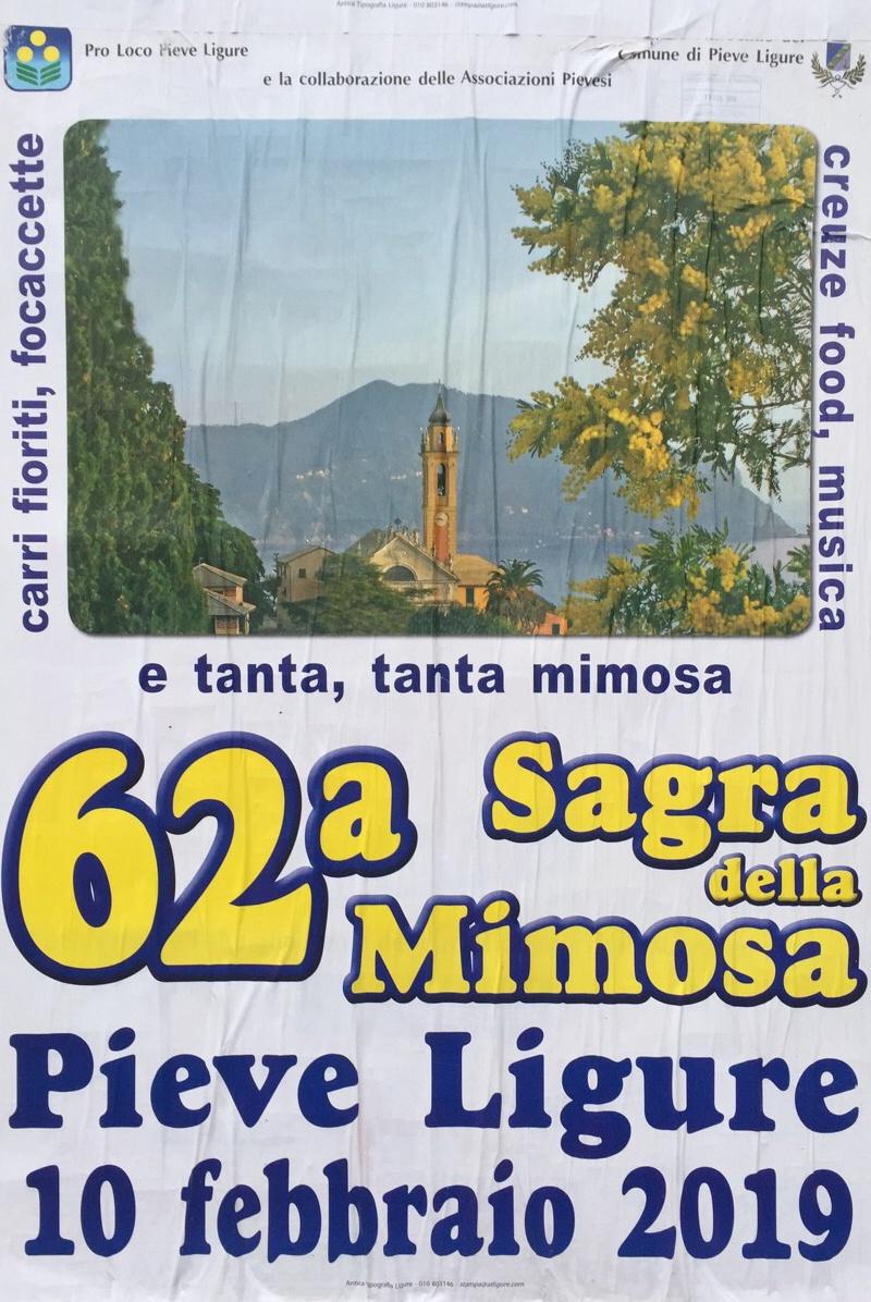 62ª Sagra della Mimosa Pieve Ligure Pieve Ligure Dal 10/02/2019 Al 10/02/2019 11:30 - 17:00